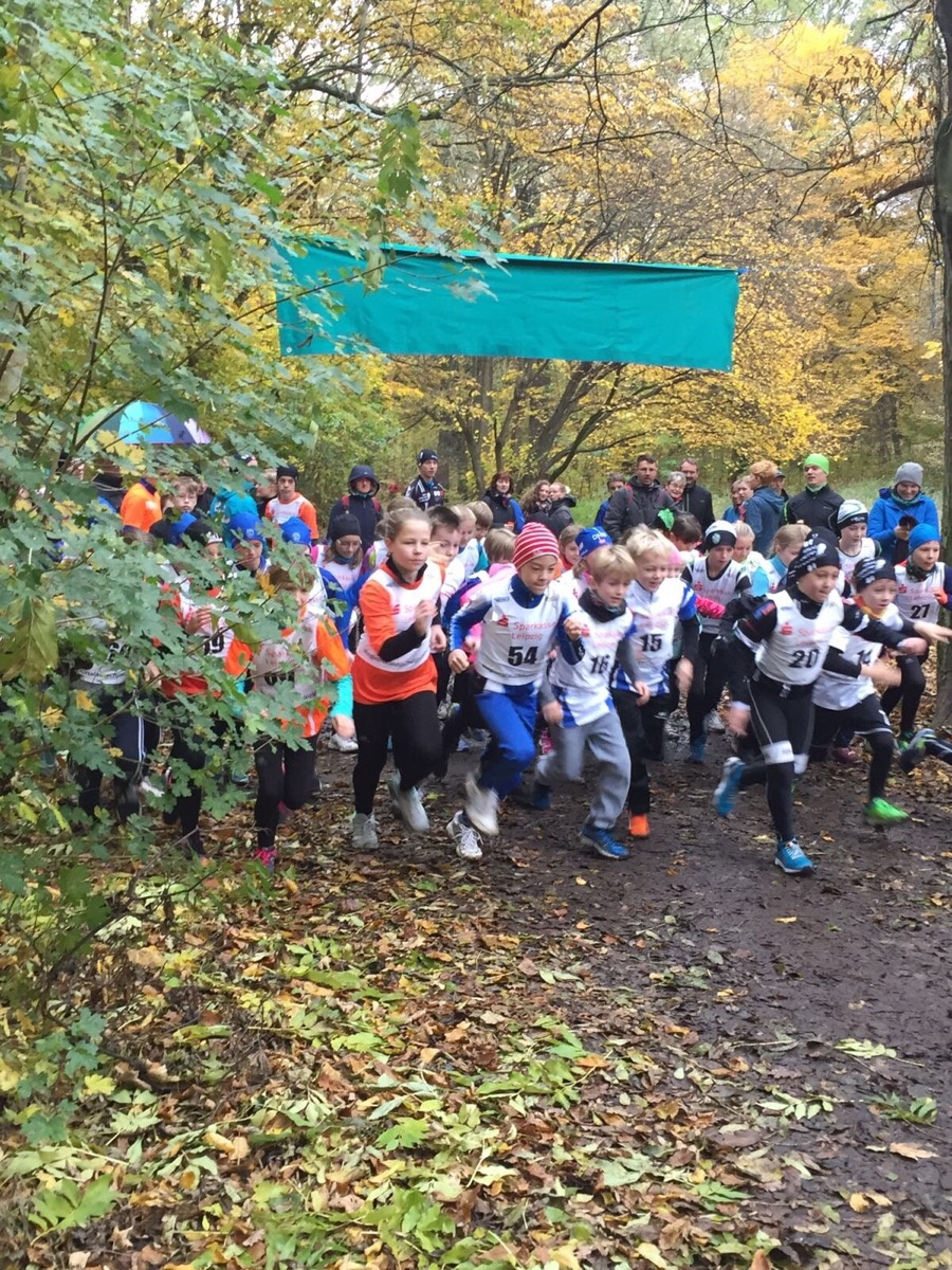 Herbstwaldlauf 2016 Start